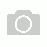 COMMODORE HOLDEN VT VU VX VY VZ WH WK WL CHROME STANDARD WHEEL NUT SET